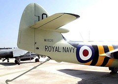 """Hawker Seahawk 11 • <a style=""""font-size:0.8em;"""" href=""""http://www.flickr.com/photos/81723459@N04/48327411391/"""" target=""""_blank"""">View on Flickr</a>"""