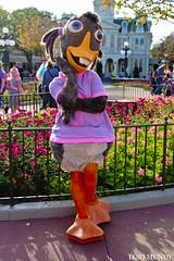 Abby Mallard (disneylori) Tags: abbymallard chickenlittle meetandgreetcharacters disneycharacters characters magickingdom waltdisneyworld disneyworld wdw disney