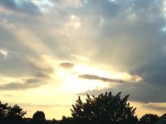 Rays (daveandlyn1) Tags: thesky sunset rays clouds trees shrubs smartphone cameraphone psdigitalcamera pralx1 p8lite2017 huaweip8 ripleyderbyshire