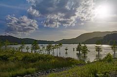 Ocoee Lake (mevans4272) Tags: ocoee lake trees sun clouds grass rocks mountains tn usa