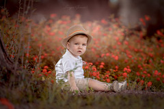 _DSC6931 imp (SergiGaró) Tags: kids kid bokeh flickr flower field forest fineart fairytale face hat child children photography session portrait innocence childhood