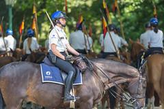 Belgische Polizistin sitzt auf einem Pferd mit einem Schwert in der Hand in Brüssel, Belgium