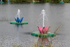 Water lily installations with splashing water at the lake of Tomorrowland (verchmarco) Tags: festival tomorrowland europa belgium brussel europe 2019 brüssel music water wasser flower blume nature natur summer sommer river fluss lake see pool schwimmbad reflection reflexion park noperson keineperson bright hell outdoors drausen garden garten flora color farbe boat boot wet nass travel reise landscape landschaft bird vogel
