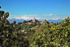 I dolci colli del Monferrato (FM54TO) Tags: piemonte monferrato crea