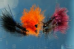 Macro Mondays - Gone Fishing (PaulE1959) Tags: orange maroon black bokeh blue hook fishing reflection waterdrops nikon d500 macromondays gonefishing