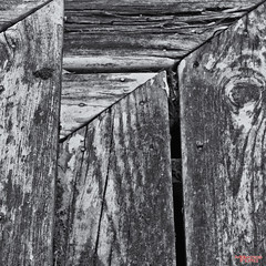 Steps (MBates Foto) Tags: aged availablelight blackandwhite daylight existinglight inspiration inspirational inspire monochrome nail nikkorlens nikon nikonais nikond810 nikonfx old outdoors paint stairs steps wood kettlefalls washington unitedstates