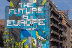 'Die Zukunft liegt in Europa' Streetart Stück in Brüssel geschrieben auf einem blauen und gelben Hintergrund mit Vögeln auf einer 30 Meter hohen Hauswand