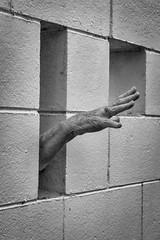 Help! Let me out! (201/365) (johnstewartnz) Tags: 201365 day201 onephotoaday oneaday onephotoaday2019 365project project365 7dmarkii 7d2 7d canon7dmarkii canoneos7dmkii canoneos7dmarkii 2470 2470mm ef2470mmf4l canonef2470f40l niksilvereffectspro blackandwhite bw monochrome hand wall rosemarysimpson