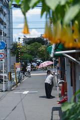 街 (fumi*23) Tags: ilce7rm3 sony street sel85f18 85mm fe85mmf18 a7r3 people emount rail 大阪 ソニー
