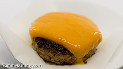 Beef and pork burger with Red Leicester (garydlum) Tags: canberra australiancapitalterritory australia
