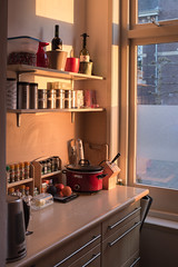 In the Kitchen (natures-pencil) Tags: kitchen interior worktop storage jars tins cans slowcooker kitchenscales spices spicerack vases wine butterbutterdish kettle blender shelves drawers window cooking home room goldenlight fruit orange apple kniferack condiments choppingboard avocado food crockpot phillips herbs tea