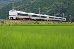Beside the rice fields (Teruhide Tomori) Tags: jr japanrailway railway railroad traffic japan japon kyoto tanba kyotanba countryside green train limitedexpress kinosaki 289series westjapanrailwaycompany 京丹波町 京都 田舎 列車 鉄道 電車 特急 きのさき 289系 風景 landscape jr西日本 山陰本線 丹波 sonobe 田圃 水田 稲 夏 summer ricefield 園部
