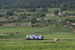 Vossloh Euro 4000 between Remigny and Santenay, Burgundy (hktrains) Tags: france french railcar sncf train railways railway autorail diesel hills vineyard vallée abfc picasso