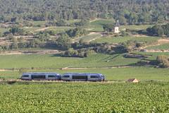 X73500 between Remigny and Santenay, Burgundy (hktrains) Tags: france french railcar sncf train railways railway autorail diesel hills vineyard vallée abfc picasso