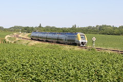 Between Remigny and Santenay, Burgundy (hktrains) Tags: france french railcar sncf train railways railway autorail diesel hills vineyard vallée abfc picasso