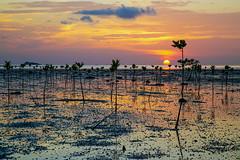 KhoPhangan_5465 (Jean-Claude Soboul) Tags: khophangan thailand thailande canon asia asie happyplanet asiafavorites