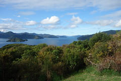 Queen Charlotte Sound (loesing.felix) Tags: sound newzealand view outside