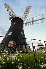 Holgate Windmill, June 2019 - 04