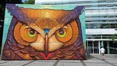 Alegria Del Prado / Lille - 11 jul 2019 (Ferdinand 'Ferre' Feys) Tags: france streetart artdelarue graffitiart graffiti graff urbanart urbanarte arteurbano ferdinandfeys