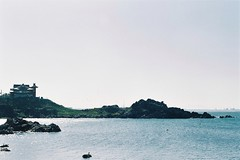 A shrine on the rock (しまむー) Tags: minolta α9000 af 50mm f17 kodak gold 200 横浜 菜の花 蕪島神社 列車 train yokohama kabushima