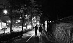 Night walkers (DameBoudicca) Tags: tokyo tokio 東京 japan nippon nihon 日本 japón japon giappone shiba shibakōen 芝公園 night natt nacht notte nuit noche 夜 street gata strase calle rue strada 道 streetshot streetphotography nightshot silhouette siluett silueta シルエット