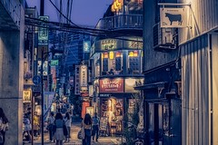 Evening city (dayonkaede) Tags: night view evening shop tokyo people japan landscape building signboard light nikon d850 500mm f18 city street