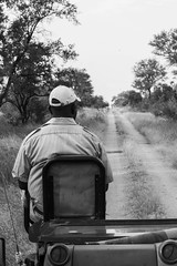 Spotter Nevil (Walt vd Hoeven) Tags: safari south africa afrika mpumalanga kruger manyeleti big five bigfive pungwe bush leopard zebra elephant lion bok buffalo