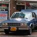 1981 Ford Fairmont Futura 3.3