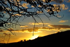 Silhuetas ao pôr do sol (Ruby Ferreira ®) Tags: silhuetas silhouettes branches galhos montanha socorrosp contraluz clouds nuvens céu sky