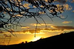 Silhuetas ao pôr do sol (Ruby Augusto) Tags: silhuetas silhouettes branches galhos montanha socorrosp contraluz clouds nuvens céu sky