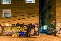 Graffiti alley Toronto (HisPhotographs.com) Tags: downtown toronto graffiti alley city night nightshooting graffitialley alleyway trash cans art brick bricks walls windows lights