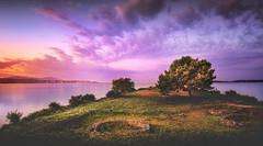 Castro de Neixón (Noel Feans) Tags: castro de neixon cespon boiro barbanza galiza galicia mencer sunrise panorama stitch sony a7iii a7 iii fe 24 14 gm