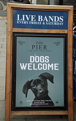 Dogs welcome (baalands) Tags: yorkshire england dogs welcome sign pub restaurant inn