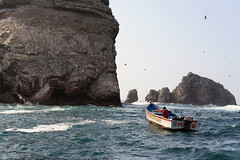 X_P1270339 (Menny Borovski) Tags: rocks avians birds marinebirds fishing ballestas paracas peru outcrop outcrops
