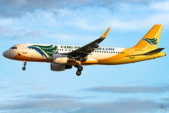 Cebu Pacific Air - Airbus A320-214 / RP-C4104 @ Manila (Miguel Cenon) Tags: cebupacific cebupac cebpac ceba320 rpll planespotting ppsg philippines plane 5j airplanespotting airplane apegroup appgroup airport airbus airbusa320 a320 manila nikon naia d3300 narrowbody wings wing window flying fly winglet twinengine aircraft aviation sky tree cockpit building rpc4104