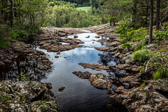 Scenery from the Elgå (Moose river) (Thor Edvardsen) Tags: river elv elgå holtet sverige sweden norway norge nature scenery nordic water waterfall canon canon5dsr ef24105mmf4lisusm