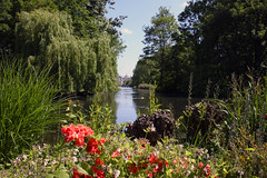 St James's Park (Royal London Parks)  -  (Selected by GETTY IMAGES) (DESPITE STRAIGHT LINES) Tags: nature mothernature naturalbeauty beauty kent landscape nikon24120mmf4 nikon24120mmf4gedvr england sunlight nikon d850 nikond850 nikkor24120mm nikon24120mm nikongp1 paulwilliams despitestraightlines flickr gettyimages morning getty gettyimagesesp despitestraightlinesatgettyimages park parkland centrallondon city capital londontown londonscenes stjamesspark stjamessparklondon royallondonparks royal lake pond water sunrise theexchequer thetreasury thequeen