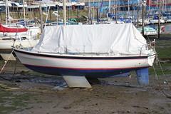 Boats at Fox's Marina, Ipswich (Ian Press Photography) Tags: boats foxs marina ipswich suffolk boat creek river orwell bourne bridge