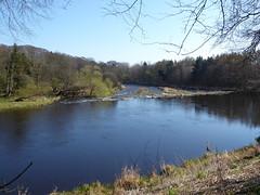 River Don at Seaton Park, Aberdeen (luckypenguin) Tags: scotland aberdeen seatonpark park riverdon river
