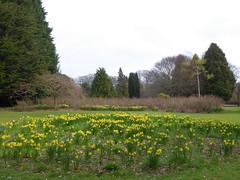 Duthie Park, Aberdeen (luckypenguin) Tags: park scotland aberdeen duthiepark