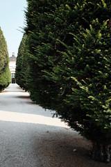 2019-07-20_monumentale_0193 (Alessandro Amodio) Tags: cimitero statue esterni tombe milano lombardia italia
