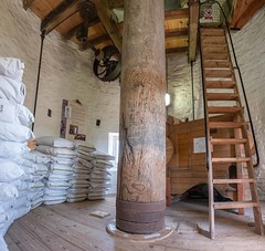 Holgate Windmill, June 2019 - 18