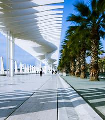 Málaga (dominiquita52) Tags: spain andalucia malaga promenade palmtrees palmiers architecture