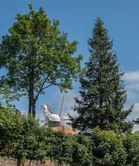 Holgate Windmill, June 2019 - 32