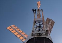 Holgate Windmill, June 2019 - 31