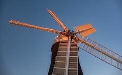 Holgate Windmill, June 2019 - 28
