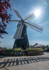 Holgate Windmill, June 2019 - 26