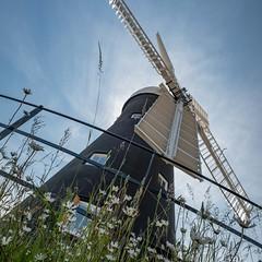 Holgate Windmill, June 2019 - 25