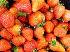 Vitamine. (remember moments) Tags: dietmarvollmer erdbeeren strawberries multiple accumulation red fruit vitamins vitamine