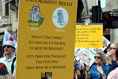 s_img_4986 (calmeilles) Tags: marchforchange piccadilly london antibrexit